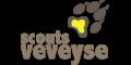 Groupe scout Veveyse | 1614 Granges